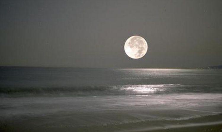 Uma Noite na Praia ao Luar.